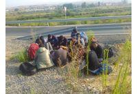 Нелегални мигранти