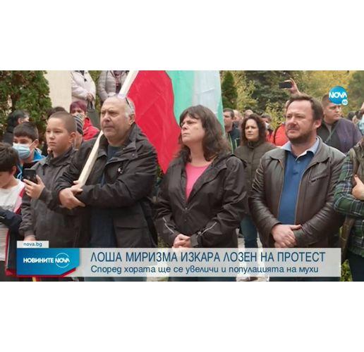 Протест в Лозен срещу фермата за ларви
