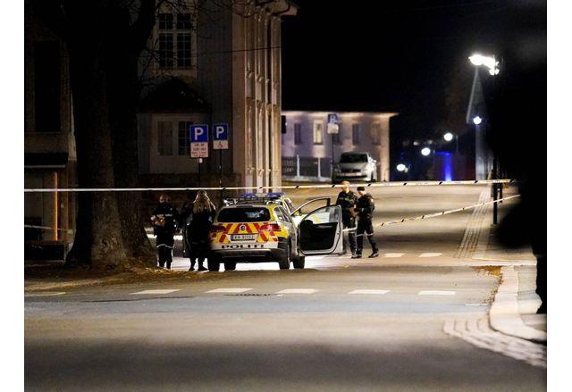 Полицията в Норвегия